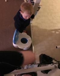 Difficult balance of training WHILE potty training!