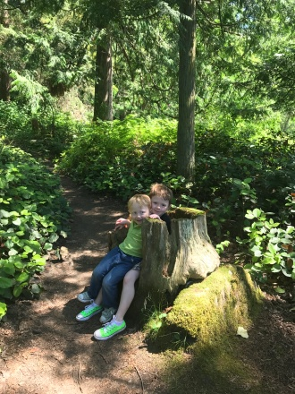 15_gnomes_larrabeestatepark.JPG